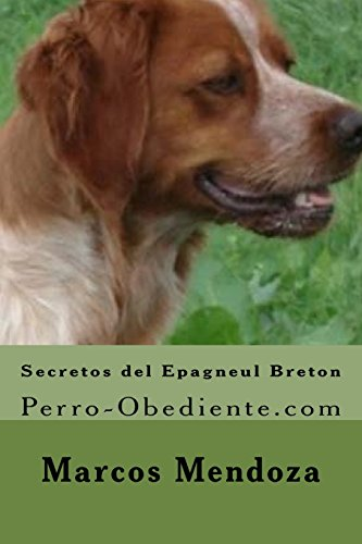 Secretos del Epagneul Breton: Perro-Obediente.com
