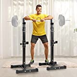 Scurrty Barbell Rack Bench Press Rack Stand Adjustable Squat Rack Cap Barbell Dumbell Rack Gym Bench Press Squat Bench Press Set Weight Rack Dip Stand Fitness Bench Press Equipment Home Gym