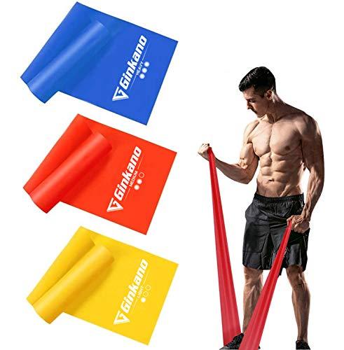 Haquno elastico fitness (3 pezzi)1.5M /1.8M /2M,con 3 livelli di resistenza, ideale per yoga, pilates, allenamento di forza e flessibilit e stretching