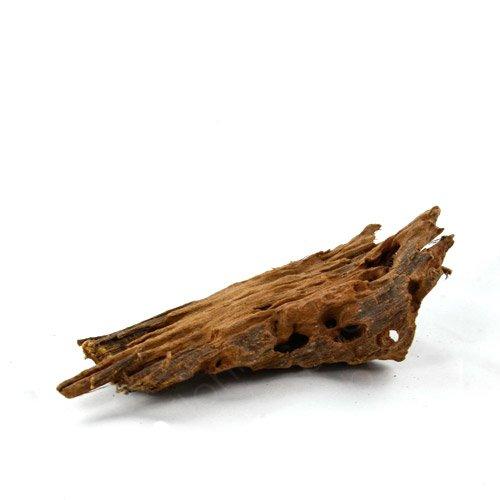 Bachflohkrebse Mangrovenwurzel für Aquarien und Terrarien 12-15 cm Wurzel Mangroven