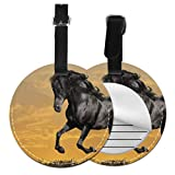 NameTagForLuggageTravellingBag Animals Horses Manipulation CG Digital Art Sky Clo TravelLuaggeBagTags LuggageGiftTags with Adjustable Black Strap For Bags & Baggage with Privacy Protection
