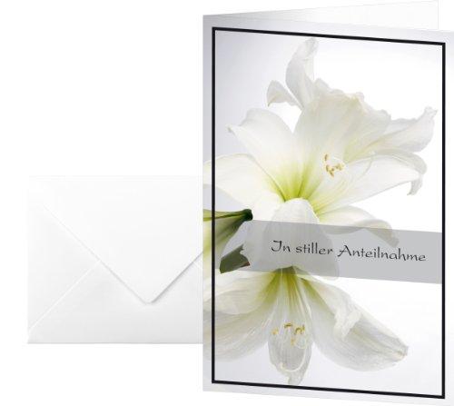 """Sigel DS006 - Biglietto di condoglianze, motivo """"Amarillide bianco"""", 17 x 11,5 cm, 10 pezzi, include buste bianche"""