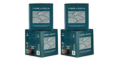 Bag in Box vino Cabernet 2x 5L + Bag in Box vino Merlot 2x 5L - Vigne di Giulia