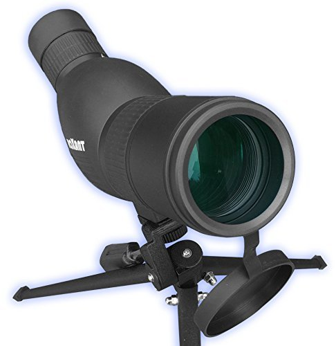 Roxant Authentic Blackbird High Definition...