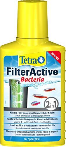 Tetra FilterActive 100 ml Contiene Batteri Vivi che Attivano il Filtro e Batteri che Riducono l'Accumulo di Impurit, Mantiene il Filtro Biologicamente Attivo e Riduce le Impurit