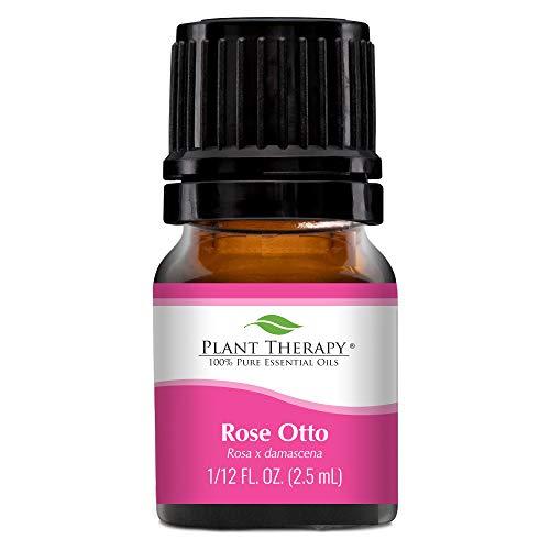 Plant Therapy Rose Otto Essential Oil