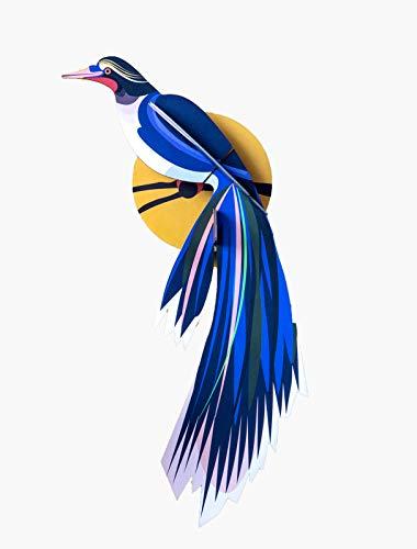 BIRDS OF PARADISE, FLOWERS