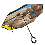 Anyangeight Pug Windproof Umbrella Adorable Puppy Photography with Sad Dog and Wildflowers on a Park Bench for Car/Rain/Sun 42.5'x31.5'Inch Pale Brown Yellow Blue