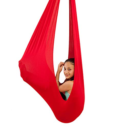 Quility Indoor Therapy Swing for Kids with Special Needs  ...