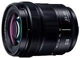 パナソニック 標準ズームレンズ フルサイズミラーレス一眼 Lマウントシステム用 ルミックス LUMIX S 20-60mm F3.5-5.6 ブラック S-R2060