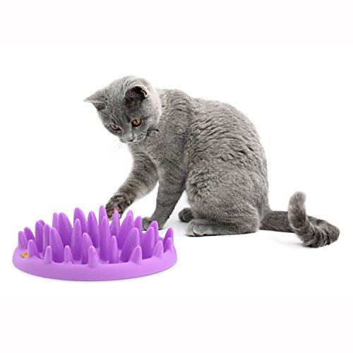 The Company of Animals CATCH Interactive Feeder, Purple