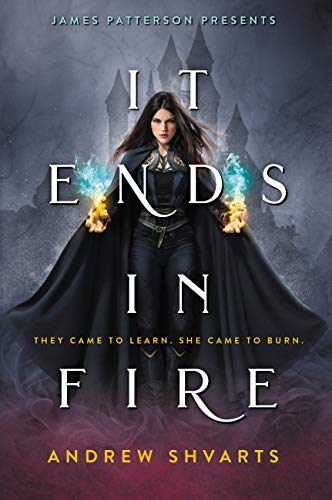 It Ends in Fire by [Andrew Shvarts]