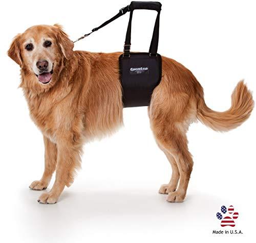 GINGERLEAD Dog Support & Rehab Sling Harnesses –...