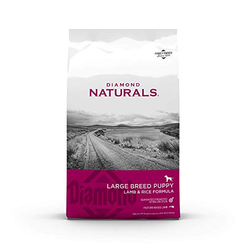 Diamond Naturals Dry Food for Puppy, Large Breed...