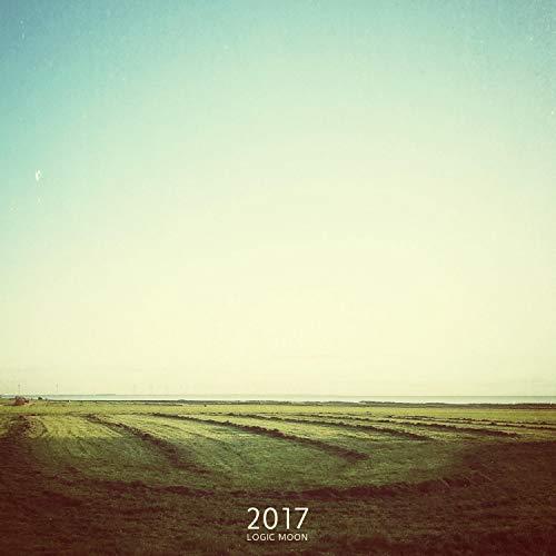 2017 - Drone