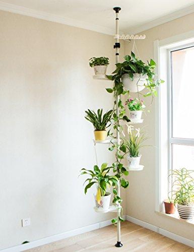 Pflanzenregale ZCJB Blumen-Regal-Eisen-Multifunktionsbalkon-Wohnzimmer-Innenaufbau Chlorophytum-Standplatz-europäischer Art