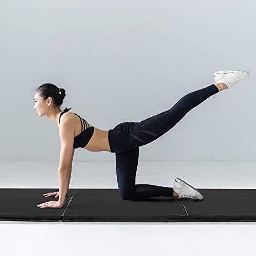 41hBYecrdHL - Home Fitness Guru
