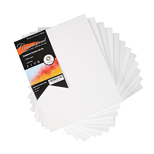 Liezo Conda Profestional 20 x 25 cm libre de acido, paquete