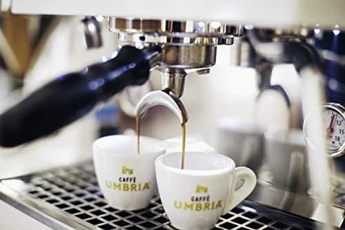 Caffe Umbria Fresh Seattle Whole Bean Roasted Coffee, Arco Etrusco Blend Dark Roast, 12 oz. Bag 4