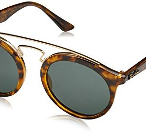 Ray-Ban Injected Unisex Sunglass Round 1