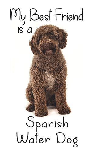 "My best Friend is a Spanish Water Dog: 8"" x 5"" Blank lin"