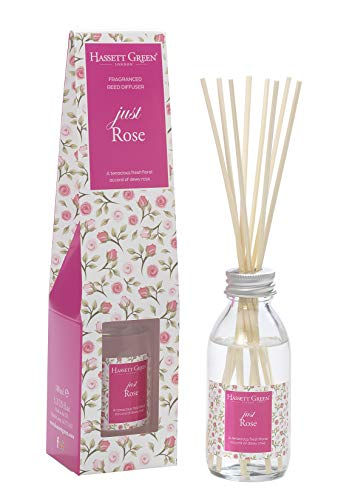Just Rose Duftöl-Diffusor mit Rattanstäbchen, 100 ml, langlebiger Raumduft – mit 8 Rattan-Blättern