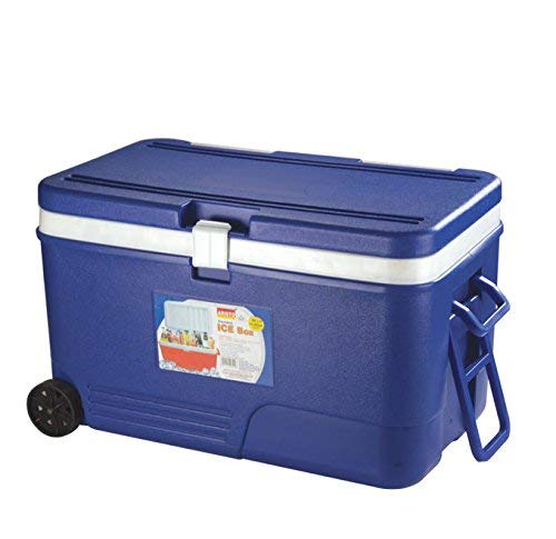 ARISTO Plastic Insulated Icebox Chiller with Handle for Easy Carry and Access, 60 L (Blue)