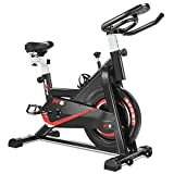 RELIFE REBUILD YOUR LIFE Vélo d'appartement Fitness Exercice Bikes...