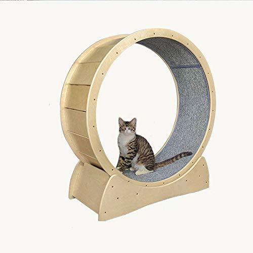 Cinta de Correr para Gatitos, Gatos y Mascotas