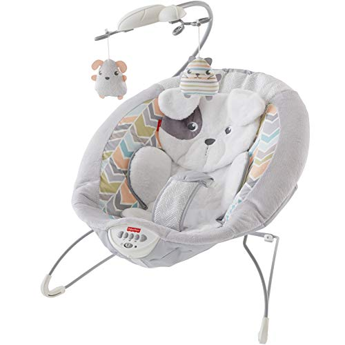 Fisher-Price Sweet Snugapuppy Dreams Deluxe...