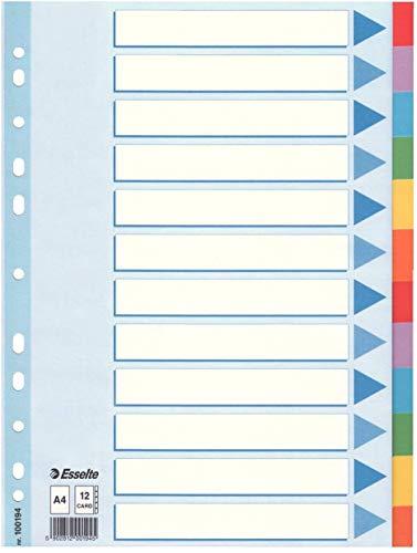 Esselte Register für A4, Deckblatt und 12 Trennblätter mit Taben, Blau/Mehrfarbig, Recyclingkarton, 100194