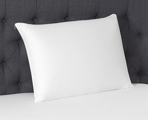 Beautyrest Latex Foam Pillow, Queen