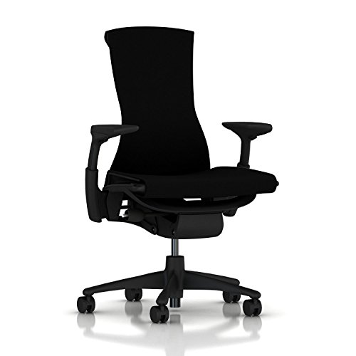 Herman Miller Embody Chair: Fully Adj Arms -...