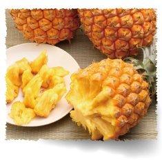 沖縄県産ボゴールパイン2kg(2~5個)