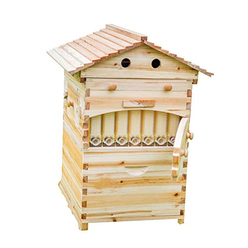 LANGLANG Automatic Wooden bee hive House kit with...