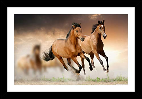 Shree Acrylic Sheet Handicraft Vaastu Home Decorative Two Running Horse Painting Wall Mount Photo Frame (Brown, Multicolour, 14 inch x 20 inch x 0.5 inch)