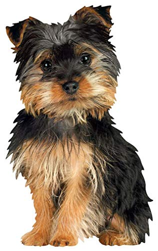 """Paper House Productions 3.5"""" x 2.25"""" Die-Cut Silky Terrier Dog Shaped Magnet for Refrigerators and Lockers"""