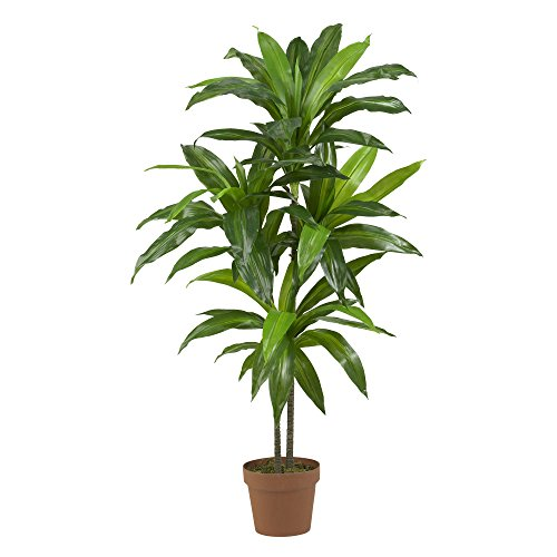 Nearly Natural 43in. Dracaena Silk (Real Touch) Artificial plant, Green