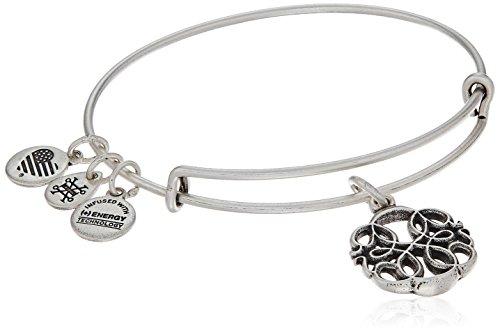 Alex and Ani Path of Life IV Rafaelian Silver Bangle Bracelet