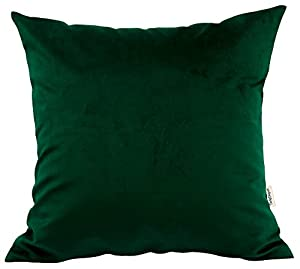 Quantity & Material: 1 removable accent decorative throw pillow cover (Note: Only Cover, and INSERT NOT INCLUDED). Made with very high quality polyester fabric (Heavyweight Flannel) for super softness , easy care, longevity and luxury. FEEL THE DIFFE...