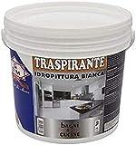GDM Peinture à l'eau respirante, idéale pour salles de bains et cuisines.