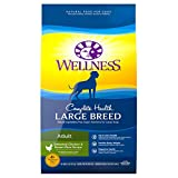 Wellness Natural Pet Food 89113 Complete Health Natural Dry Large Breed Dog Food, Chicken & Rice, 30-Pound Bag