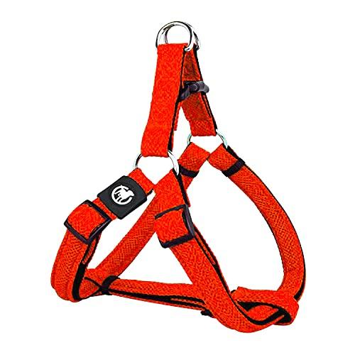 DDOXX Arnés Perro Step-In Air Mesh, Ajustable, Acolchado | Muchos...
