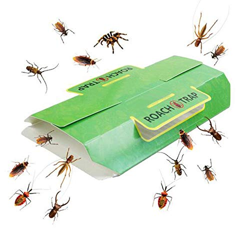 Klhamky Trappola Adesiva per scarafaggi, con Esca, Non tossica e Ecologica, 12 Pezzi