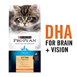 Purina Pro Plan FOCUS Kitten Chicken & Rice Formula Dry Cat Food - (1) 7 lb. Bag