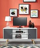 BAÏTA Meuble TV, Gris et Blanc, L116cm