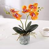 Alicemall Fleur Artificiel Orchidée Tissu en Pot Céramique pour Décoration de...