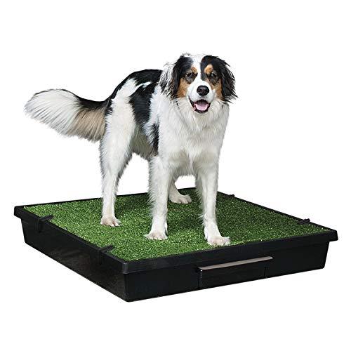 PetSafe Pet Loo Portable Dog Potty, Alternative to...