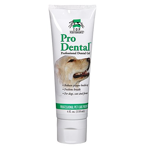 Top Performance ProDental Gel — Soothing and...