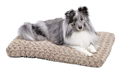 MidWest Homes for Pets Deluxe Dog Beds | Super...